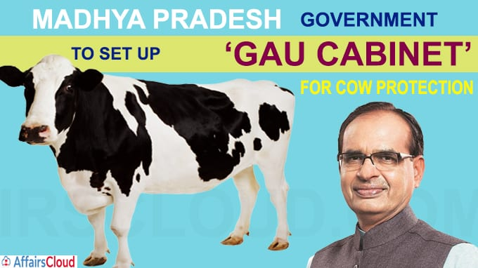 Madhya Pradesh govt to set up gau cabinet for cow protection