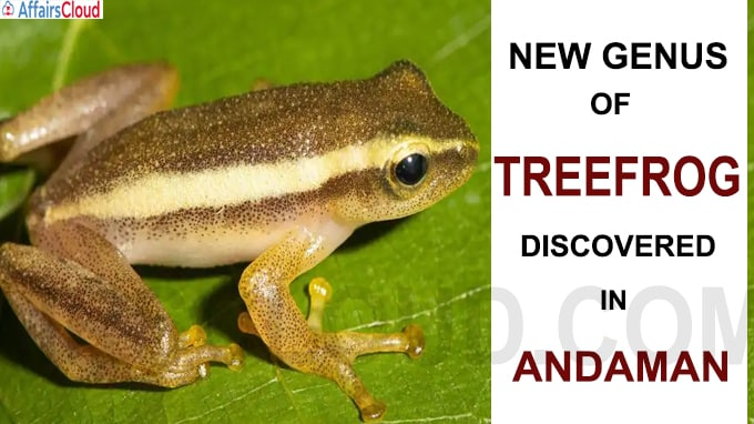 New genus of treefrog discovered in Andaman