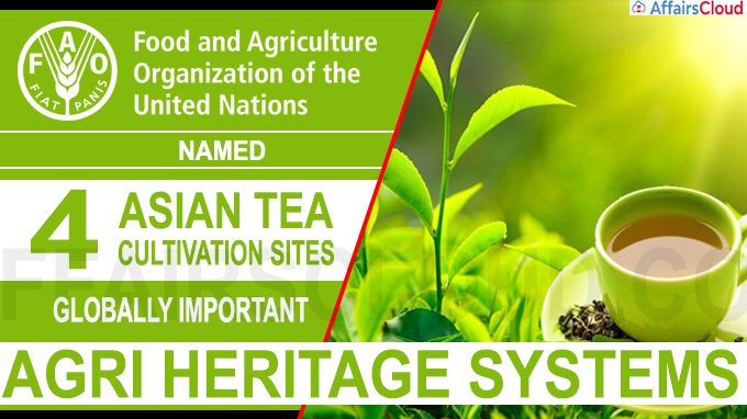 United Nations' FAO names 4 Asian tea cultivation sites