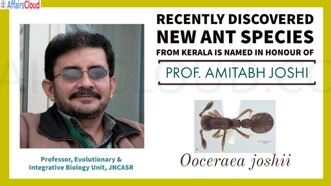 New ant species discovered from Kerala named after JNCASR researcher