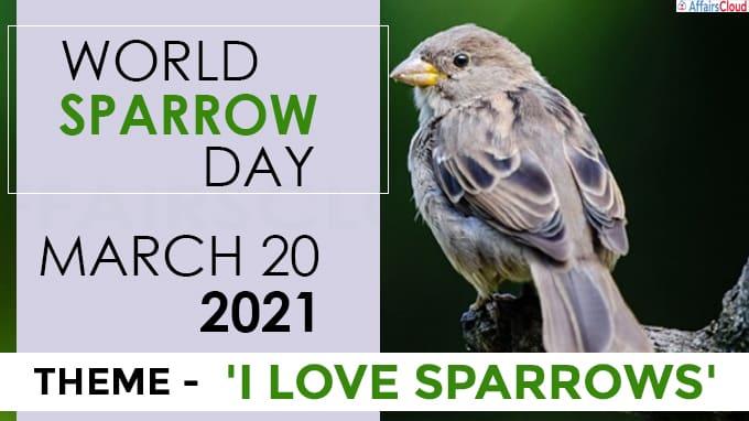 World Sparrow