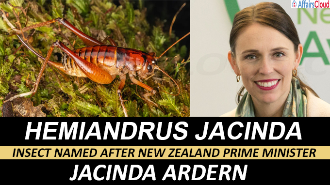 insect named after New Zealand prime minister