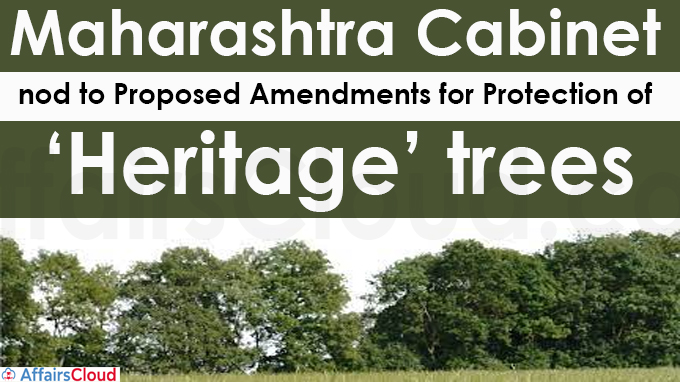 Maharashtra Cabinet nod to proposed amendments for protection of 'heritage' trees