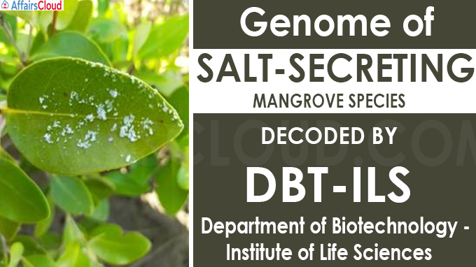 Genome of salt-secreting mangrove species