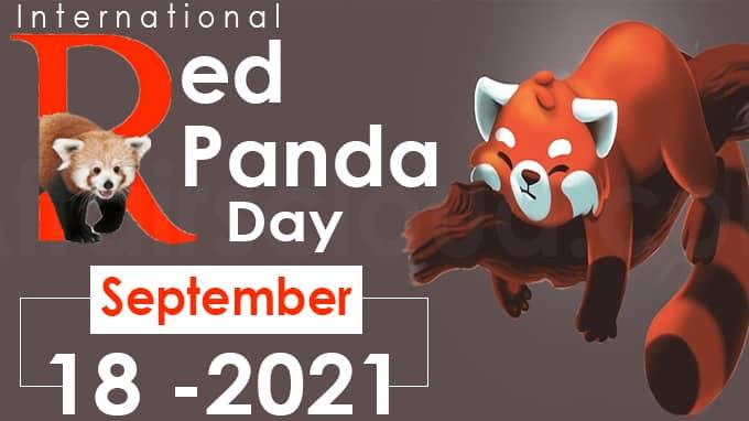 International Red Panda Day 2021 new