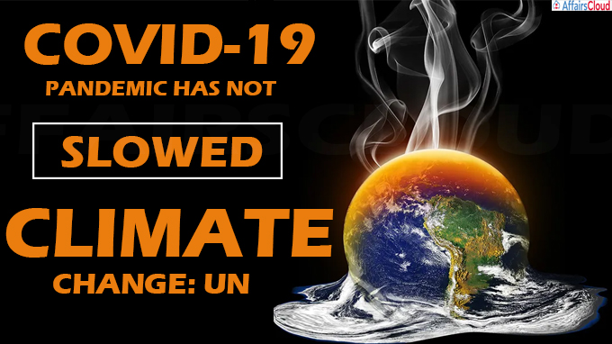 not slowed climate change