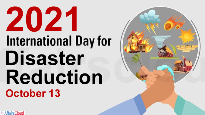 International Day for Disaster Reduction copy